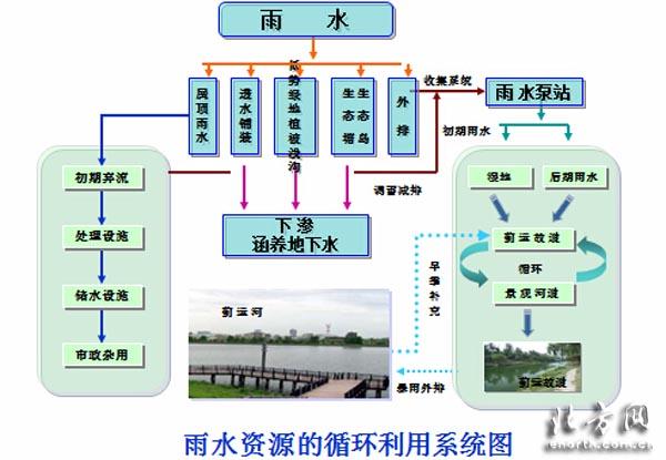 城市生态系统结构