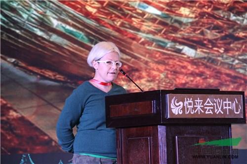 【艾景奖现场】安娜・卡特蕾娜:城市改造与文化遗产价值化的实验性共享实践策略
