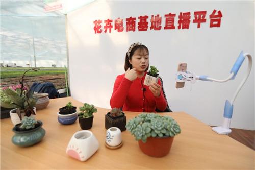 青州花卉创业园把鲜花卖到全国