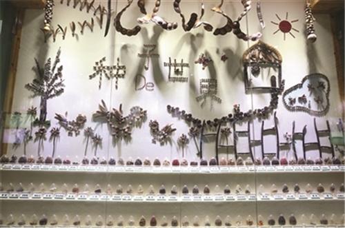"""南京中山植物园科普馆开放 实物展示 """"见血封喉""""树皮衣"""