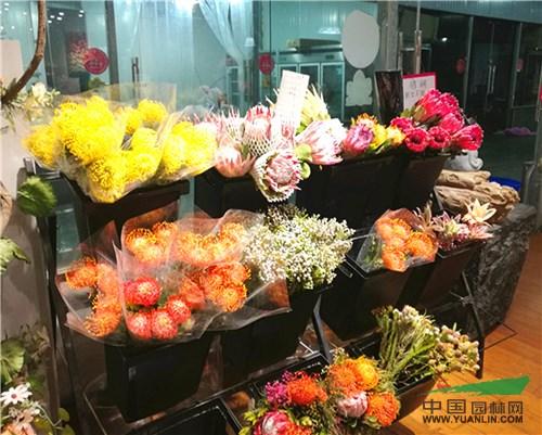 郑州陈砦花卉双桥基地成重要的鲜切花交易集散中心