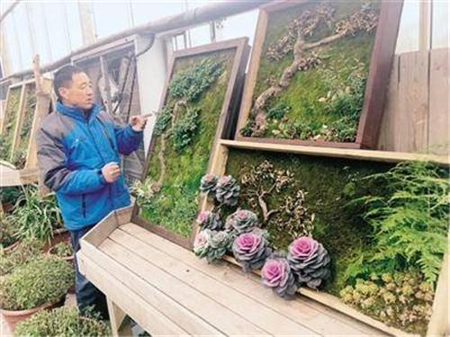 郑州达人的植物壁画获全国奖