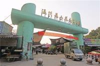 景山花木市场明年搬家 将落户瓯海丽岙的温州花城