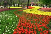 2017年福建省每个设区市将筹建城市植物园