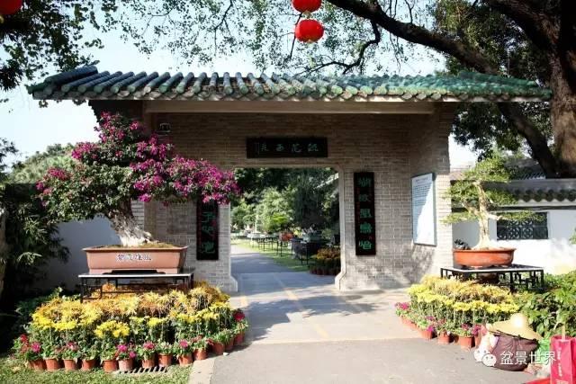 广州:园林博览会盆景人的春节盛会