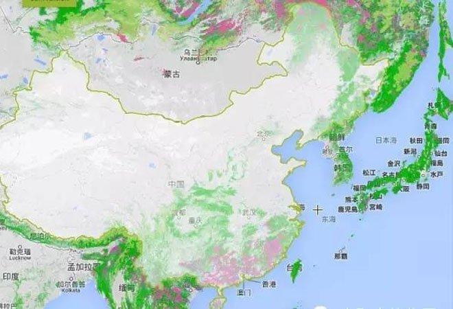 看到的森林覆盖率地图上,中国除西南及东北外,全国几乎都呈灰白或浅