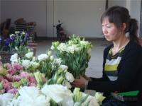 云南:通海女强人引领花农走增收致富之路