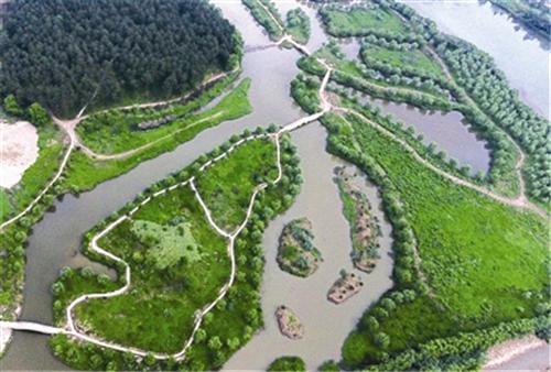 浙江武义:两村联建千亩生态湿地