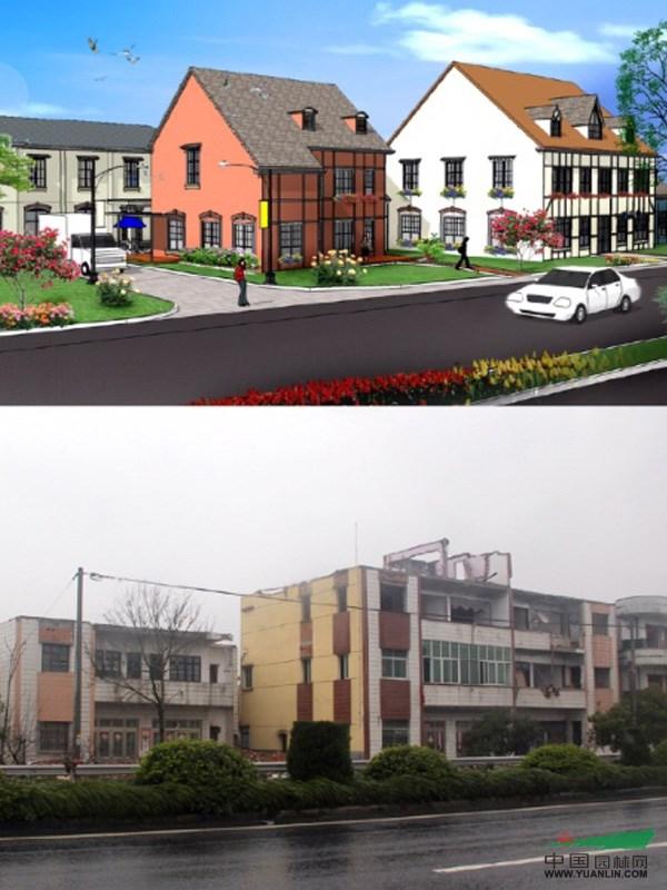 在浙江省,海宁市,长安镇等部门领导的指导下,长安花卉小镇前期的基础