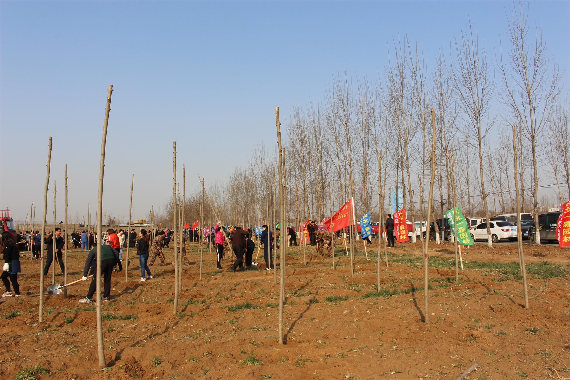 元氏县领导到河北一森园林苗木基地参加义务植树活动