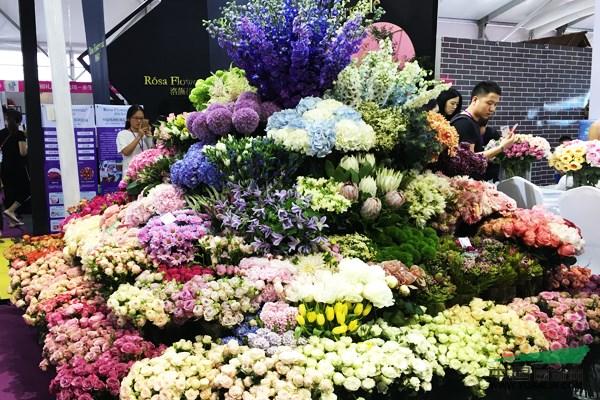 2017国际家庭花卉园艺展览会在夏溪开幕图片