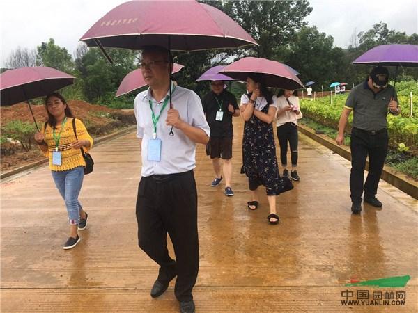 2017全国苗乡行广西线第三天,走进南宁树木园