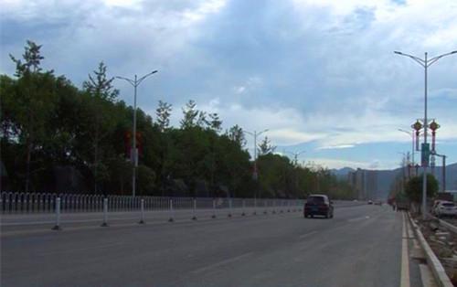湖南临湘:23公里银杏景观林荫大道初显雏形