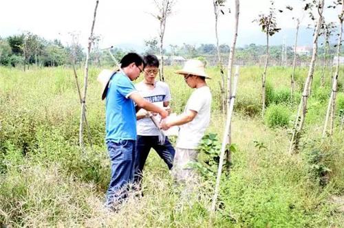 """李卫鹏:3名学生建造心中的有机农业""""伊甸园"""""""