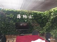 """上海""""立体绿化与屋顶农业技术""""培训班【活动邀请】"""