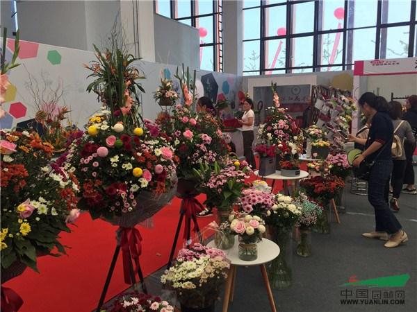 图说|2017第五届中国沭阳花木节今日开幕