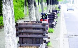 南昌青云谱区300个花箱荒废 沦为垃圾箱