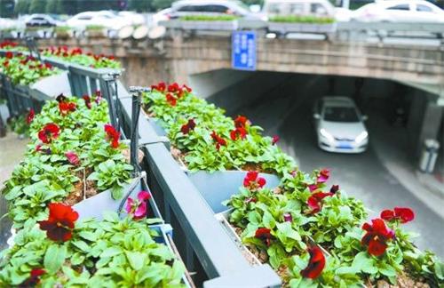 湖南长沙:增加立体绿化施工 吸尘降温美化环境