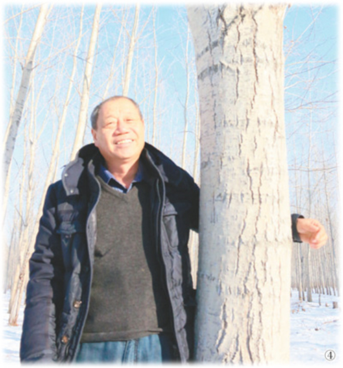 15年植树600万株