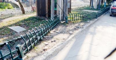 扬州:路边护栏遭破坏 花木被践踏