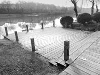 枣庄西沙河景观护栏破损 存隐患