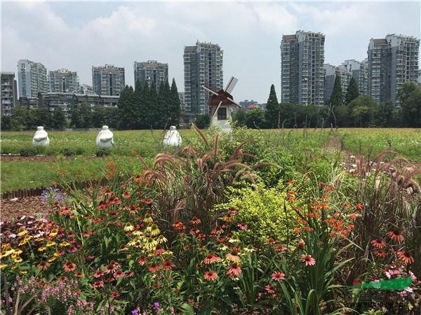 工程评选:浙江金五月生态科技发展有限公司