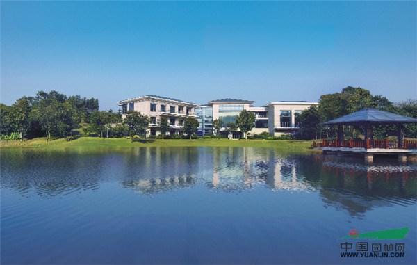 工程评选:深圳市东大景观设计有限公司
