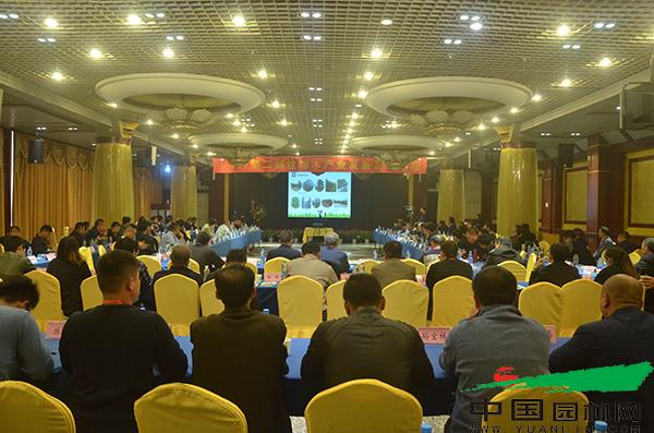 2017第二届丝棉木产业发展高峰论坛成功举办