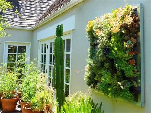 最新垂直绿化植物墙做法 各种类型以及特点解析