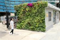 宁波:首个种植毯垂直绿化墙正式亮相
