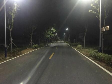 滁州古沛镇:路灯照亮回家的路