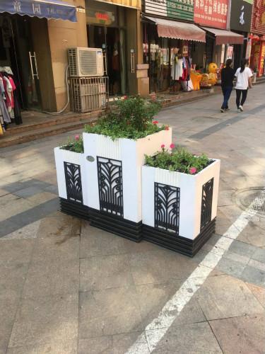 合肥滨湖新:组合式花箱扮靓农贸市场