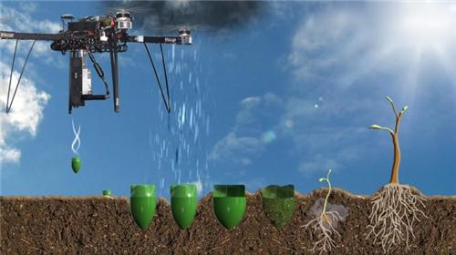 英国公司运营无人机 计划未来三十年内种植5000亿棵树