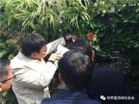 立体绿化与美丽中国建设研讨会暨立体绿化实用技术培训班