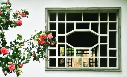 透过这些镂空图案,从里往外透着典雅的诗意, 少了隔断墙的厚重之感