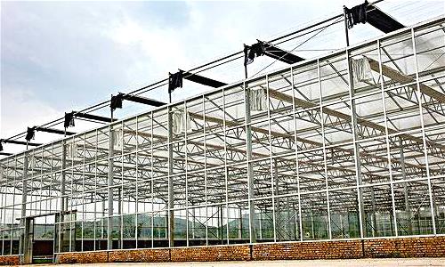 恩施宣恩首个智能温室大棚开建