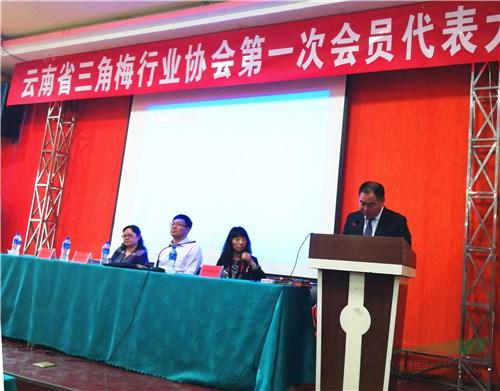 云南省三角梅行业协会召开会员大会