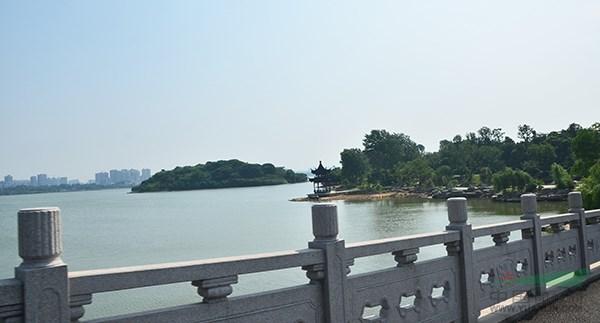 岳阳南湖项目考察:与湖相生,感受自然的方式造境