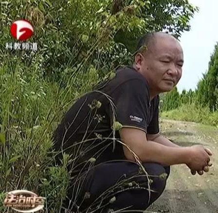 安徽霍邱一园林绿化公司三百万苗木款欠四年 拖垮一家人