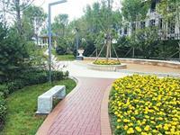 太原:拆了违建建起小游园 有雕塑 有喷泉