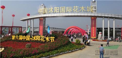 第六届中国•沭阳花木节开幕