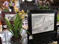 兰石相融 同台比美  云南大理举办兰花天然大理石画博览会