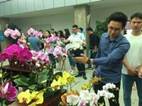昆明花卉对标达标提升专项行动成效显著 14项企标达国际先进水平