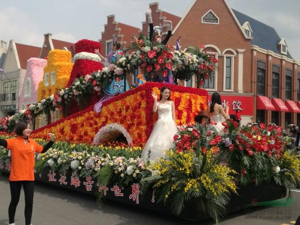 荷兰花海皇家花车游行演绎荷兰异域风情