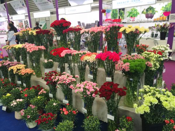 第21届中国国际花卉园艺展览会在上海成功举办
