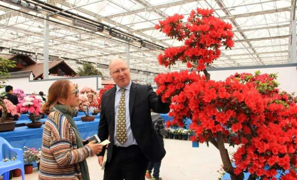第十六届中国杜鹃花展览在山东日照盛大开幕