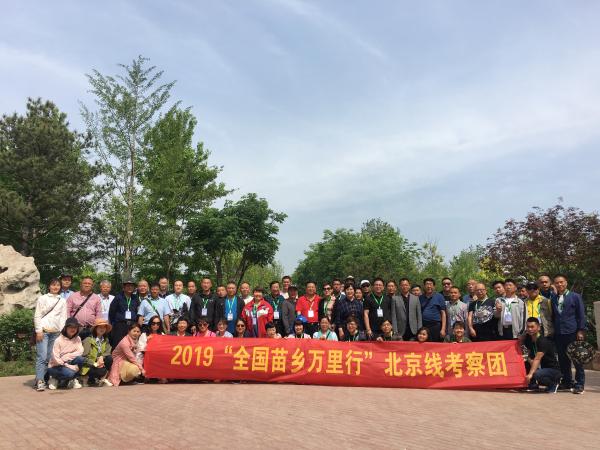 【苗乡行北京线】第二天:心灵震撼的北京乡土苗木