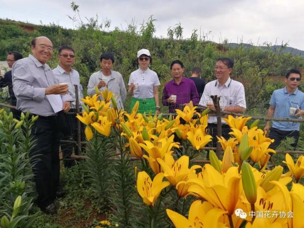 中花协组织专家赴贵州开展花卉扶贫调研