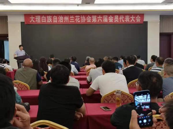 大理兰花协会召开会员代表大会