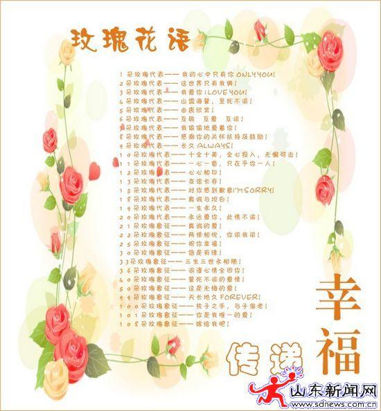 七彩玫瑰花语